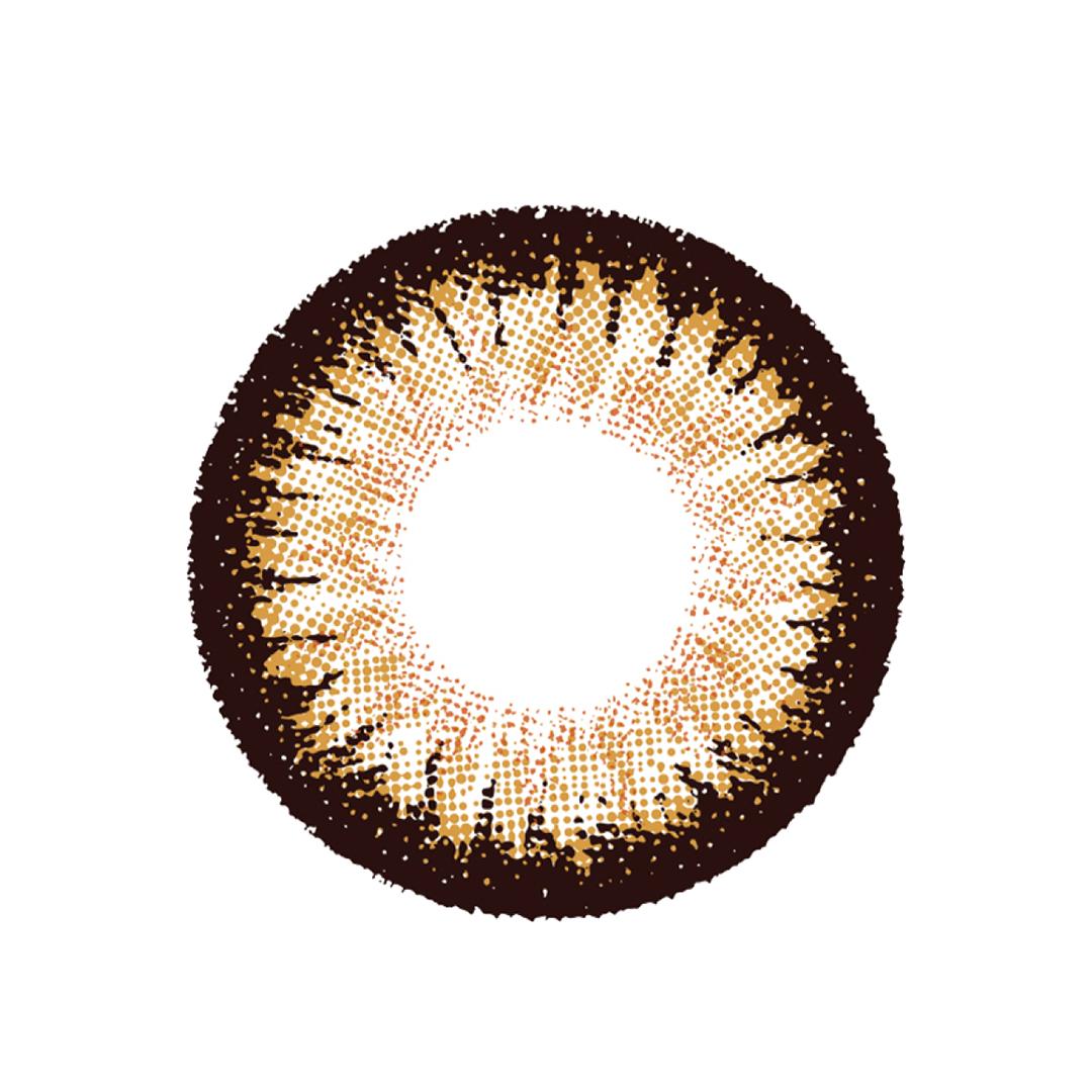 レンズ | MAPLE NUTS(メープルナッツ)